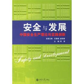 安全与发展:中国安全生产理论与实践创新