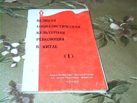 中国的社会主义文化大革命(第一集)(俄文版)