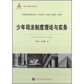 国家出版基金资助项目·中国刑事法制建设丛书·刑法系列:少年司法制度理论与实务