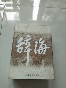 辞海 (1999年版)缩印本  精装 含书衣