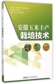 安徽玉米丰产栽培技术