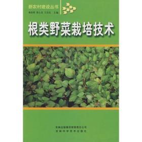 根类野菜栽培技术