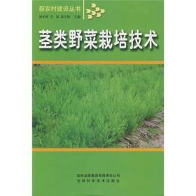 茎类野菜栽培技术