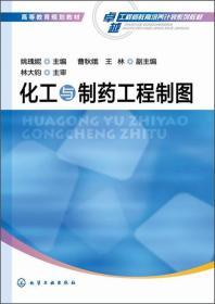 化工与制药工程制图/高等教育规划教材·卓越工程师教育培养计划系列教材