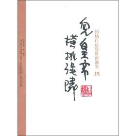 柏杨白话版资治通鉴 - 儿皇帝·横挑强邻 35
