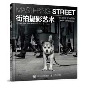 街拍摄影书 街拍摄影艺术