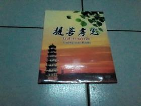 提菩孝光(DVD)