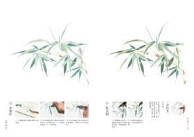 【签绘本】诗经草木绘:古风水彩植物手绘技法