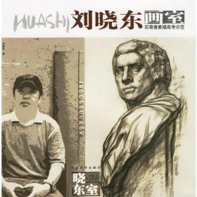 刘晓东画室--石膏像素描高考示范