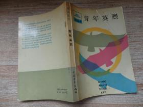 祖国丛书:青年英烈