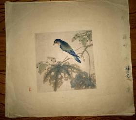 彩色珂罗版:花鸟画~(3)
