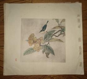 彩色珂罗版:花鸟画~(6)