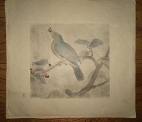彩色珂罗版:花鸟画~(7)