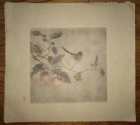彩色珂罗版:花鸟画~(8)