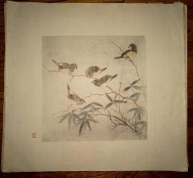 彩色珂罗版:花鸟画~(9)