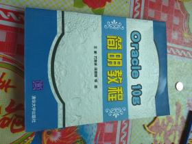 Oracle 10g简明教程