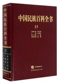 中国民族百科全书13