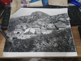 大幅黑白老照片泰山风景---碧霞春色