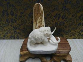 古玩文玩收藏类:猛犸牙雕小象摆件一个 象身是猛犸牙(冰料)雕的 底座是鹿角盘 总重45g左右 6.9*5.3*4.5cm左右 材料保真实物图片