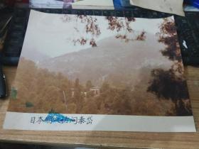 八十年代大幅彩色老照片泰山风景---日本朋友访问泰岱