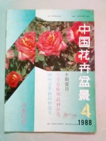 中国花卉盆景 1988年第4期