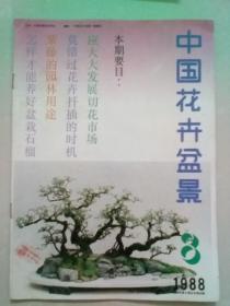 中国花卉盆景 1988年第8期