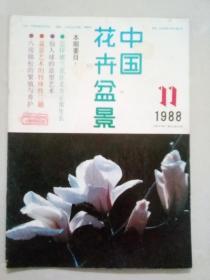 中国花卉盆景 1988年第11期