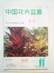 中国花卉盆景 1987年第11期