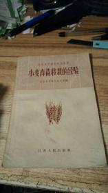 农业生产技术实用丛书: 小麦育苗移栽的经验