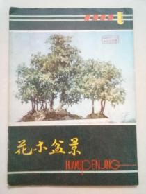 花木盆景1985年第1期