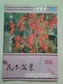 花木盆景1985年第6期