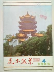 花木盆景1985年第4期