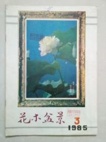 花木盆景1985年第3期
