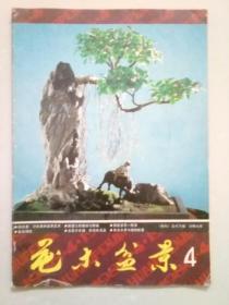 花木盆景1986年第4期