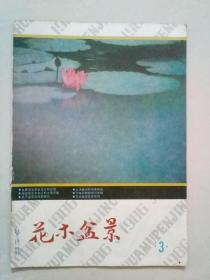 花木盆景1986年第3期