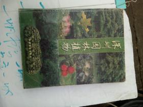 深圳园林植物