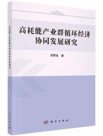 高耗能产业群循环经济协同发展研究