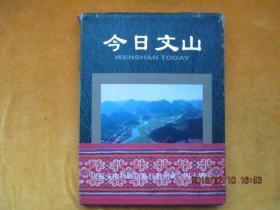 节日文山(精装)倒装本