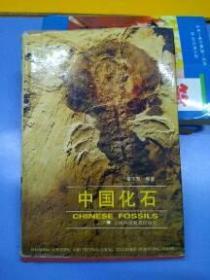 中国化石/BT (外来之家)