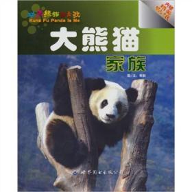 大熊猫家族