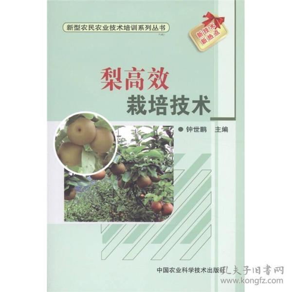 新型农民农业技术培训系列丛书:梨高效栽培技术