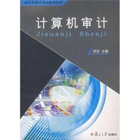 会计审计准则解读丛书:计算机审计