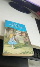 AIice in Wonderland