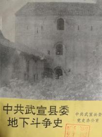 中共武宣县委地下斗争史