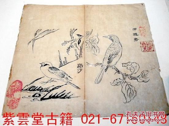 明末清初;芥子园画谱(回视鸟)原始祖本.墨勾手稿 #3728