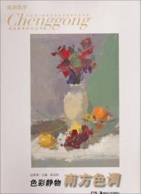 成功教学系列丛书·色彩静物:南方色调