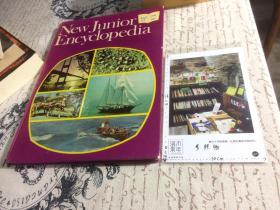 英文原版  new junior encyclopedia 15 新的初级百科全书 卷 15   【存于溪木素年书店】