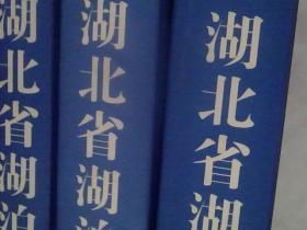 湖北省湖泊志 上中下册全三册