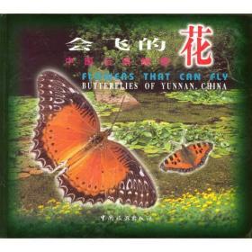 会飞的花--中国云南蝴蝶