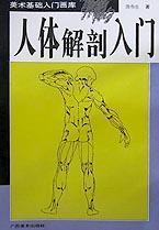 人体解剖入门/美术基础入门画库
